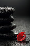 Zen stones and rose petals over black Stock Photo