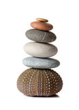 Isolated Zen Stones. Isolated photo of zen stones, placed on top of a sea urchin Royalty Free Stock Photo