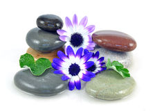 Zen stones in shallow pool Stock Photo