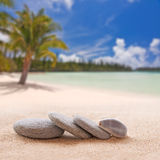 Zen stones and shells Royalty Free Stock Photo