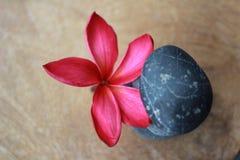 Zen stones spa Στοκ Εικόνες