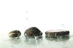 Zen stones with splashing  water drops Stock Images