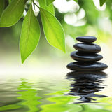 Zen stones stack. Black zen stones, green leaves, water background