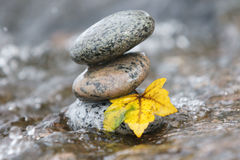 Zen stones in the water. Stacked Zen stones in the water with drops splashing and maple leaf Royalty Free Stock Images