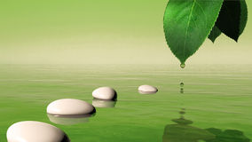 Zen stones in the water. And green leaf with water drop vector illustration