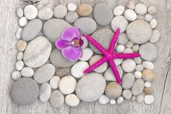 Zen Style Starfish Still Life photo libre de droits