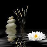 Zen Symbols Royalty Free Stock Photography