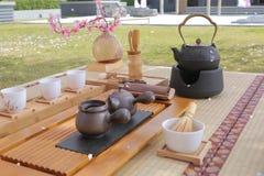Zen tea set under sakura tree. Set of Japanese tea ready to use under sakura tree Royalty Free Stock Images