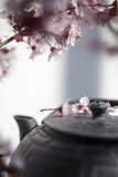 Zen tea time for fengshui and pure softness. Traditional Japanese teapot with cherry blossom flowers for peace and relaxation Stock Images