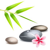 Zen theme over white. Zen theme with bamboo and colored pebbles over white vector illustration