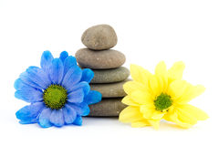 Zen therapy stones Stock Image