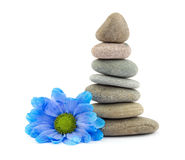 Zen therapy stones Royalty Free Stock Image