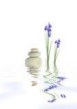 Zen Tranquility Stock Photo