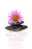 Zen Treatment Stock Photo