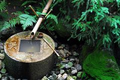 Zen water basin Stock Photos