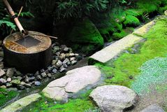 Zen water basin Stock Photography
