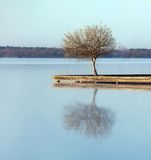 Zen waters. Rustic jetty on a zen-like idyllic lake in Aquitaine, France Stock Images