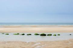 Zenbilden av en strand med arrangera i rak linje vaggar Arkivbild