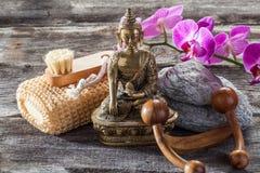 Zendekoren för att skämma bort spikar och förkroppsligar massage royaltyfri bild