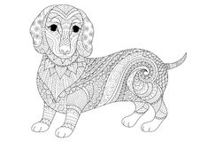 Zendoodle design of dachshund puppy for adult coloring book and T shirt design. Stock  Royalty Free Stock Photo