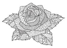 Zendoodle design of rose for design element and adult coloring book page. Vector illustration Royalty Free Stock Image