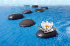 ZENES Stone en agua Foto de archivo libre de regalías