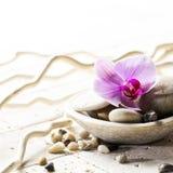 Zeninställning med den mineraliska koppen av stenar och blomman Arkivbild