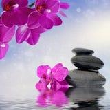Zenmassagesteine und Orchideenblumen reflektierten sich im Wasser Stockbild