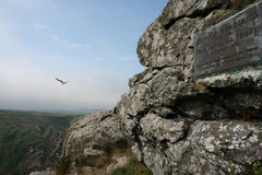 Zennor Headland. With Plaque and flying seagull Royalty Free Stock Photo