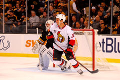 Zenon Konopka Ottawa Senators Royalty Free Stock Photography