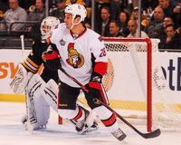 Zenon Konopka Ottawa Senators Stock Photography