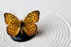 Zensteen met vlinder Stock Foto's
