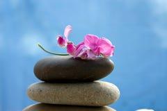 Zensteine mit einer rosafarbenen Blume Lizenzfreies Stockbild