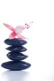 Zensteine mit rosafarbenen Blumen Stockfotografie