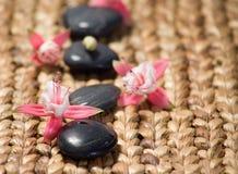 Zensteine mit rosafarbenen Blumen auf einem Graslech Stockfoto