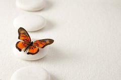 Zensteine mit Schmetterling Stockfotografie