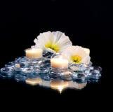 Zensteine mit weißen Blumen Stockfotos