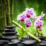 Zensteine und -bambus lizenzfreie stockfotos