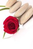 Zenstenar med blomman Royaltyfria Foton