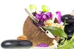 Zenstenen en kokosnoot Stock Fotografie
