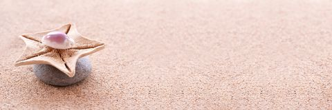 Zenstenen, zand en van zeeschelpen panoramisch zen stilleven stock foto
