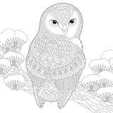 Zentangle猫头鹰着色页 库存例证