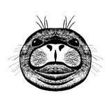 Zentangle传统化了封印 纹身花刺或T恤杉的剪影 免版税图库摄影