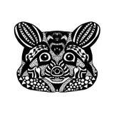 Zentangle传统化了浣熊 纹身花刺或T恤杉的剪影 免版税库存照片