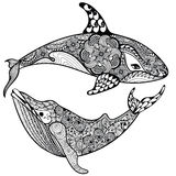 Zentangle传统化了海鲨鱼和鲸鱼 手拉的传染媒介illust 免版税图库摄影