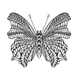 Zentangle传统化了蝴蝶 库存图片