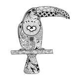 Zentangle传统化了toucan 手拉的乱画传染媒介 库存图片