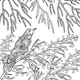 Zentangle在庭院里传统化了鸟 免版税图库摄影