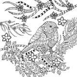Zentangle在花园里传统化了热带鸟 免版税库存照片