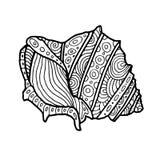 Декоративная иллюстрация раковины моря Zentangle Чертеж плана Книжка-раскраска для взрослого и детей Страница расцветки вектор Стоковое Изображение